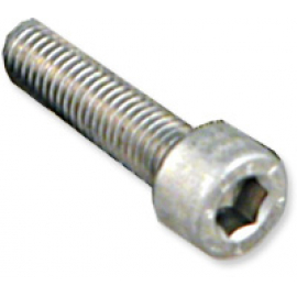 Allen Bolt M5 x 20 Stainless Steel Individual